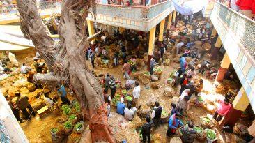 Story of Varanasi Paan